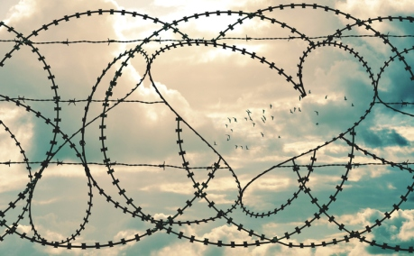 Heart in barbwire frames flock of birds in cloudscape background